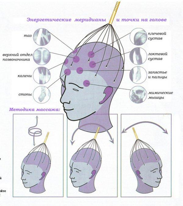 Схема массажа головы для роста волос