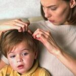 Если вы обнаружили вши у ребенка — что делать? Алгоритм действий
