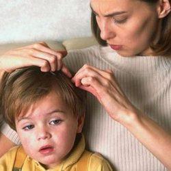 Что делать если у ребенка вши на голове