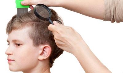 Осмотр головы ребёнка на наличие вшей